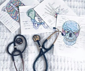 study and doctor image
