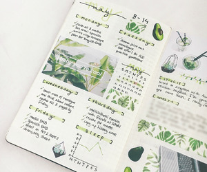 bullet journal, green, and bujo image