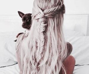 hair, dog, and girl image