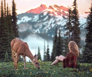 deer, girl, and forest image