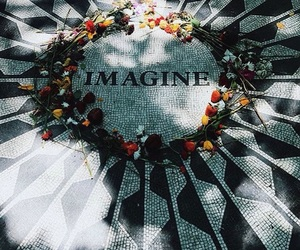 flowers, imagine, and roses image