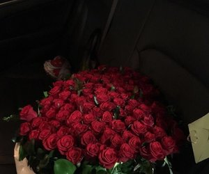 aesthetic, photography, and roses image