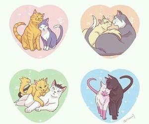 cats, naruto, and sasusaku image