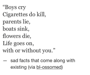 sad, life, and quotes image