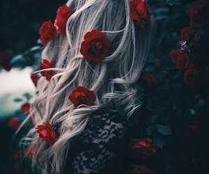 hair, rose, and girl image