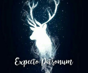harry potter, expecto patronum, and wallpaper image