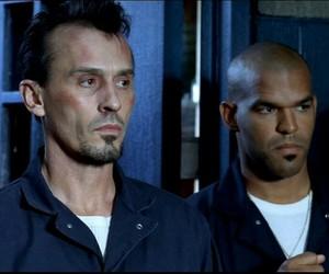 prison break, t-bag, and robert knepper image