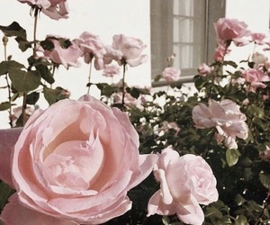 alternative, beautiful, and beauty image