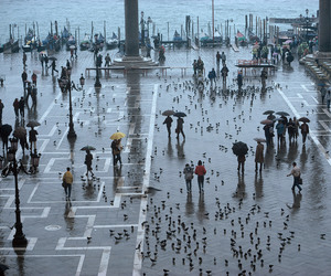 italy, venice, and piazza san marco image