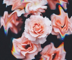 wallpaper, aesthetic, and flowers image