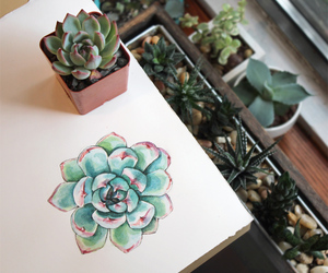alternative, cacti, and girly image