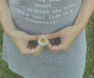 daisy, flower, and hands image
