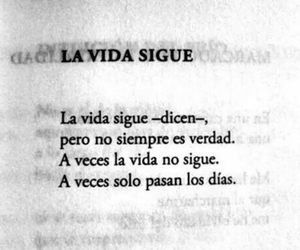 quotes, frases, and vida image