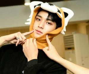 Seventeen, mingyu, and svt image