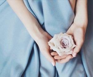 blue, femininity, and pink image