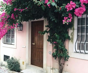 beautiful, house, and flower image