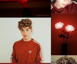 adidas, red, and roses image