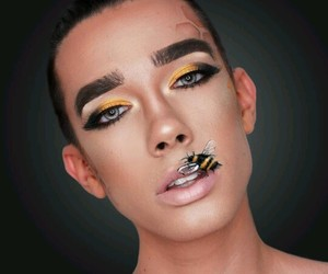 black, bumble bee, and Cover Girl image