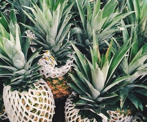 pineapple, fruit, and green image