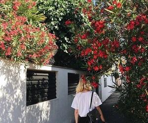 beautiful, blogger, and inspiration image