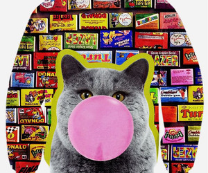 bubblegum, cat, and sweatshirt image