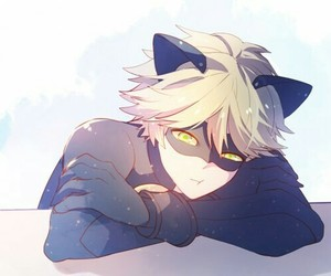 Chat Noir, miraculous ladybug, and Adrien image