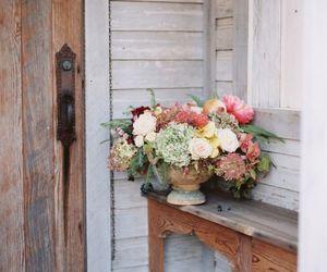 garden, summer, and spring image
