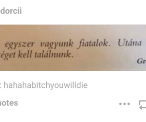tumblr, magyar, and igaz image