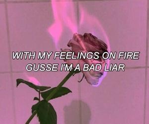 grunge, pink, and selena gomez image