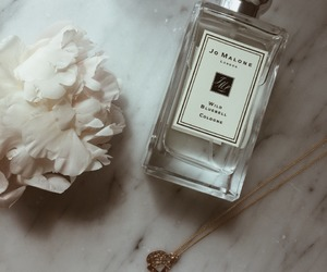 perfume and jo malone image