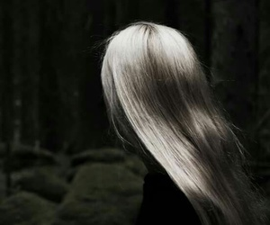 forest and hair image