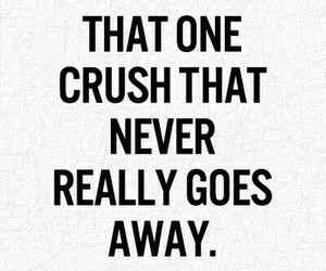 crush, love, and never image