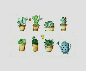 wallpaper, cactus, and drawing image
