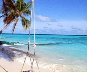 swings in the water image