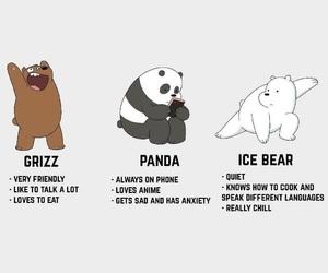 bear, panda, and grizz image