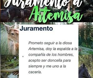 artemisa and cazadoras de artemisa image