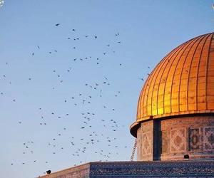 Jerusalem, mosque, and palestine image