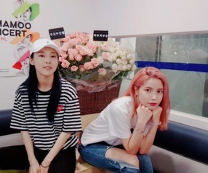 kpop, solar, and mamamoo image