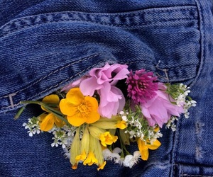 aesthetic, flower, and flowers image