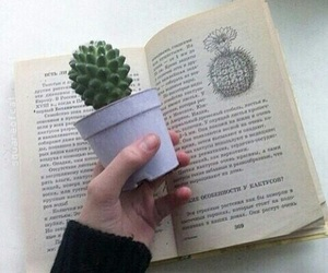 cactus, book, and plants image