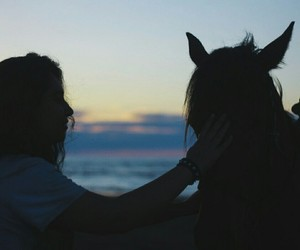 horse and girl sunset image