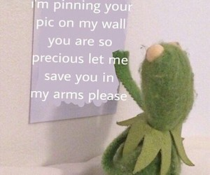 kermit and soft image