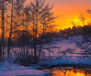 beautiful nature winter image