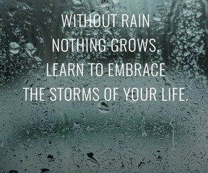 quotes, storm, and rain image