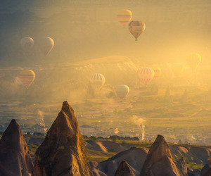 turkey, balloons, and nature image