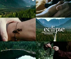 bella, wolf, and crepusculo image