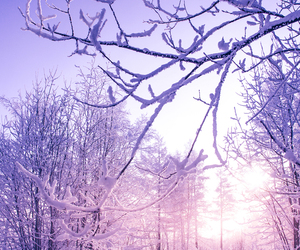 article, snow, and winter image