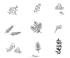 art, leaves, and plants image