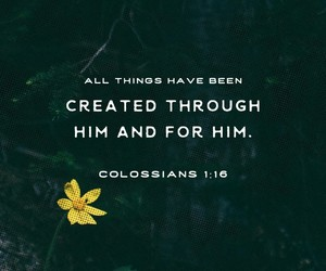 bible, daily, and inspiration image