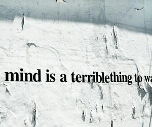 brain, mind, and people image